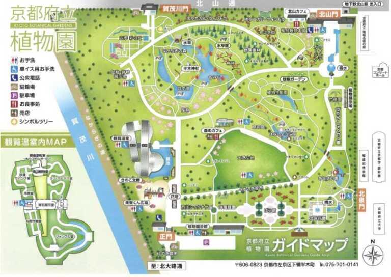 京都府立植物園のあじさいの見頃2021|アクセス・駐車場情報も!